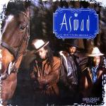 Original Cover Artwork of Aswad Dont Turn Around