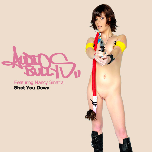 audio bullys shot you down remix