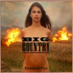 Cover Artwork Remix of Big Country Fields Of Fire