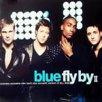 Original Cover Artwork of Blue Fly By Ii