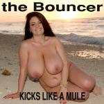 Cover Artwork Remix of Bouncer Kicks Like A Mule
