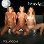 Cover Artwork Remix of Brandy Full Moon