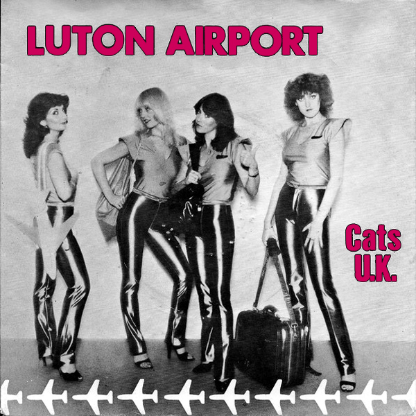 cats uk luton airport 1