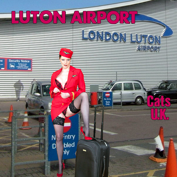 Cats Uk Luton Airport