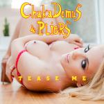 Cover Artwork Remix of Chaka Demus Pliers Tease Me