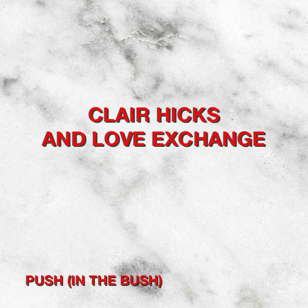 Original Cover Artwork of Clair Hicks Love Exchange Push In The Bush