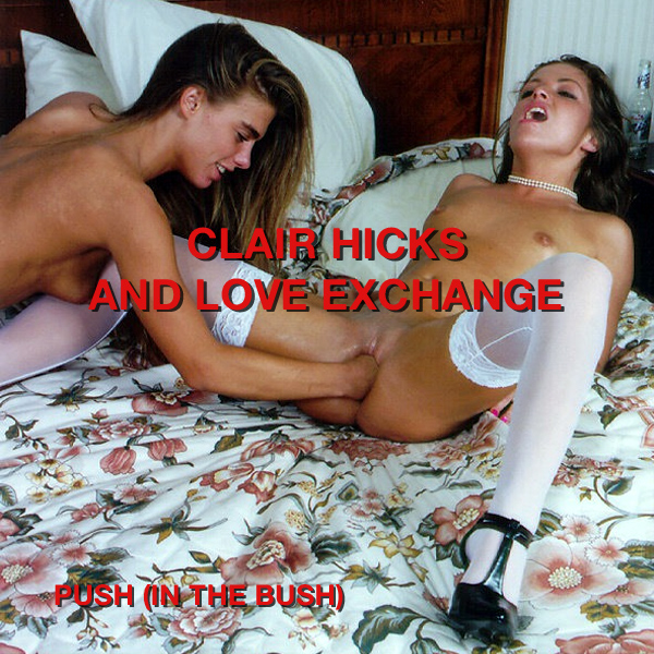 Cover Artwork Remix of Clair Hicks Love Exchange Push In The Bush
