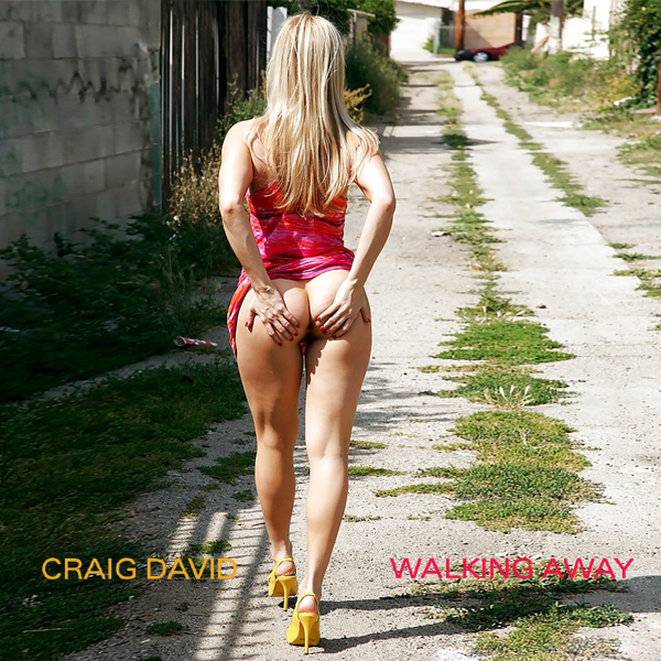 Cover Artwork Remix of Craig David Walking Away