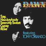 Original Cover Artwork of Dawn Featuring Tony Orlando Say Has Anybody Seen My Sweet Gypsy Rose