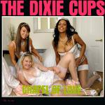 Cover Artwork Remix of Dixie Cups Chapel Of Love
