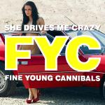 Cover Artwork Remix of Fyc She Drives Me Crazy