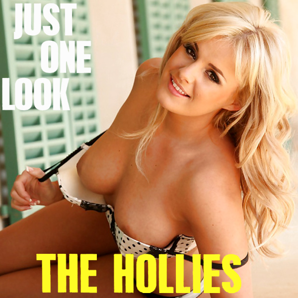 hollies just one look 2