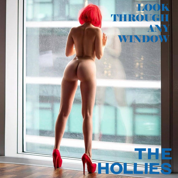Cover Artwork Remix of Hollies Look Through Any Window