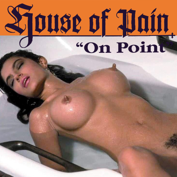 house of pain on point remix