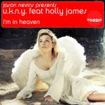 Cover Artwork Remix of Jason Nevins Ukny Holly James Heaven