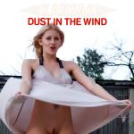 Cover Artwork Remix of Kansas Dust In The Wind