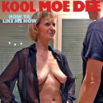 Cover Artwork Remix of Kool Moe Dee How Ya Like Me Now