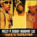 Original Cover Artwork of Nelly P Diddy Murphy Lee Shake Ya Tailfeather