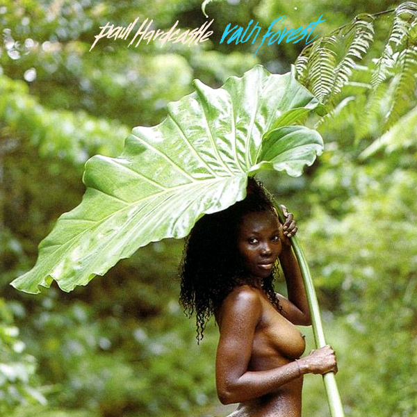 Cover Artwork Remix of Paul Hardcastle Rainforest