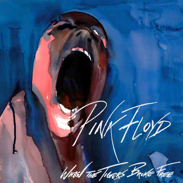pink floyd when the tigers broke free 1