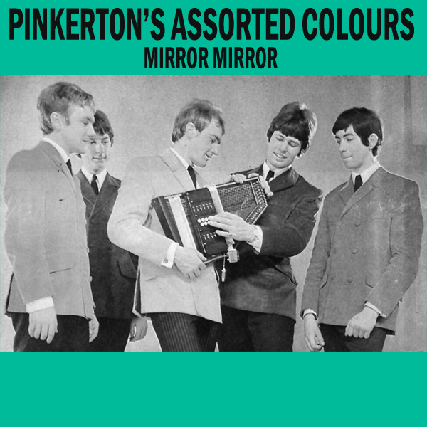 pinkertons assorted colours mirror mirror 1