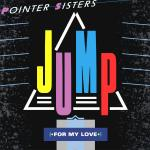 Original Cover Artwork of Pointer Sisters Jump