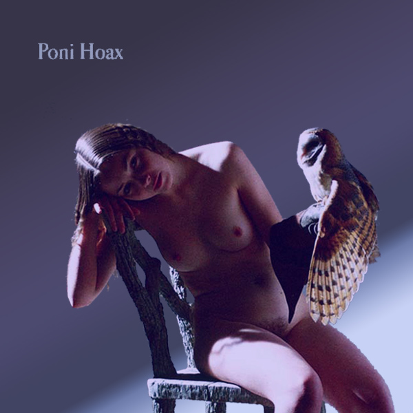 Cover Artwork Remix of Poni Hoax