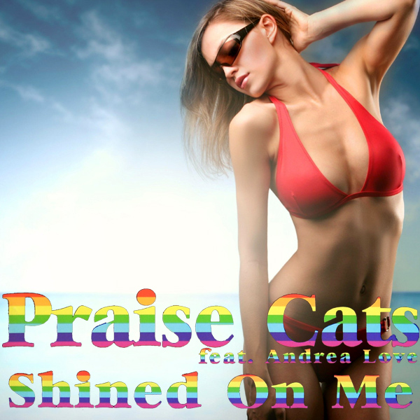Cover Artwork Remix of Praise Cats Shined On Me