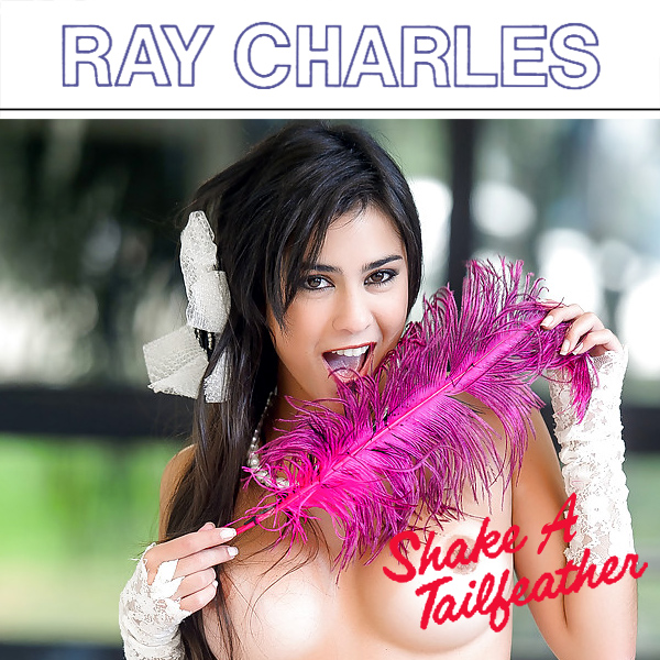 ray charles shake a tailfeather 2