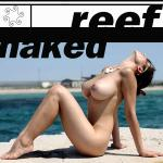 Cover Artwork Remix of Reef Naked