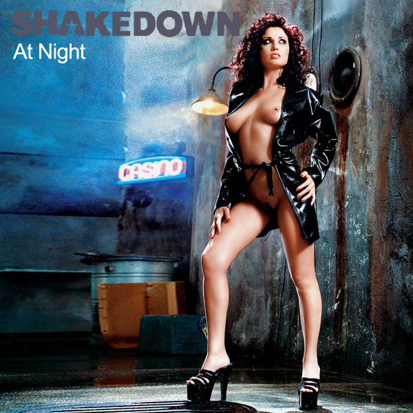 Cover Artwork Remix of Shakedown At Night