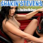 Cover Artwork Remix of Shakin Stevens You Drive Me Crazy