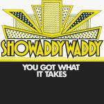 Original Cover Artwork of Showaddywaddy You Got What It Takes