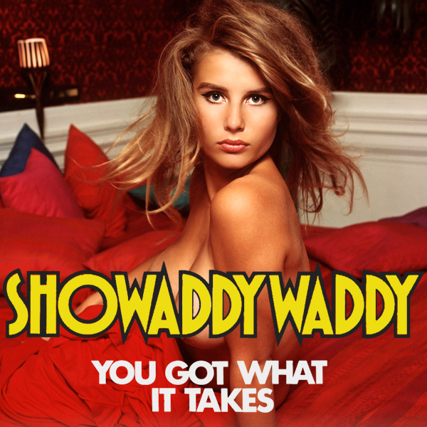 showaddywaddy you got what it takes 2