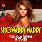 Cover Artwork Remix of Showaddywaddy You Got What It Takes