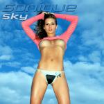 Cover Artwork Remix of Sonique Sky