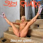 Cover Artwork Remix of Suzi Quatro Tear Me Apart