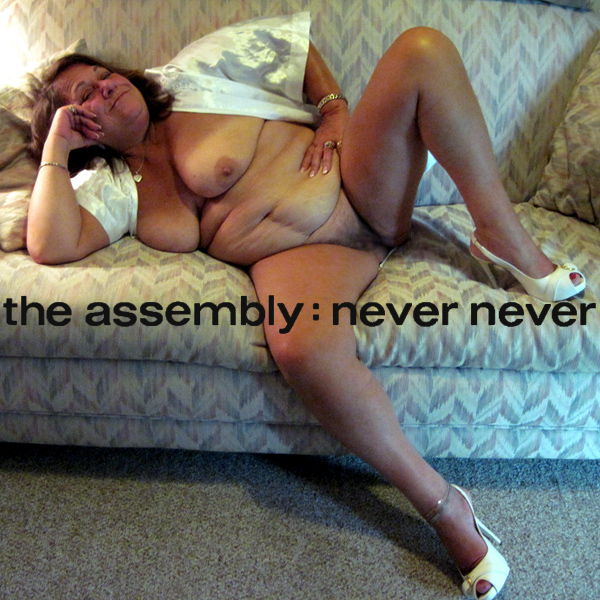Cover Artwork Remix of The Assembly Never Never