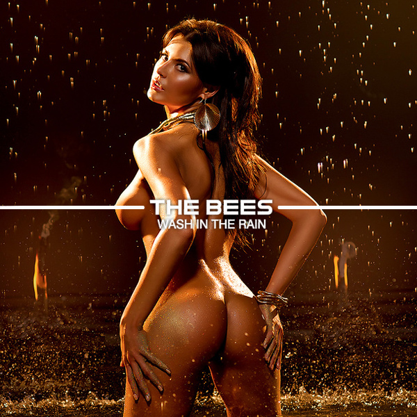 the bees uk wash in the rain remix