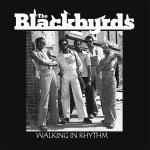 Original Cover Artwork of The Blackbyrds Walking In Rhythm