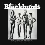 Cover Artwork Remix of The Blackbyrds Walking In Rhythm