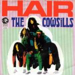 Original Cover Artwork of The Cowsills Hair