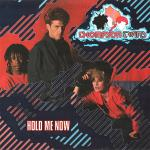 Original Cover Artwork of Thompson Twins Hold Me Now