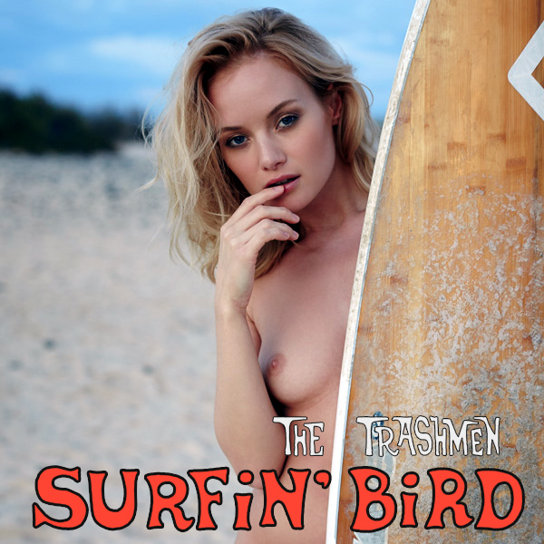 trashmen surfin bird remix
