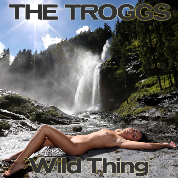 Cover Artwork Remix of Troggs Wild Thing