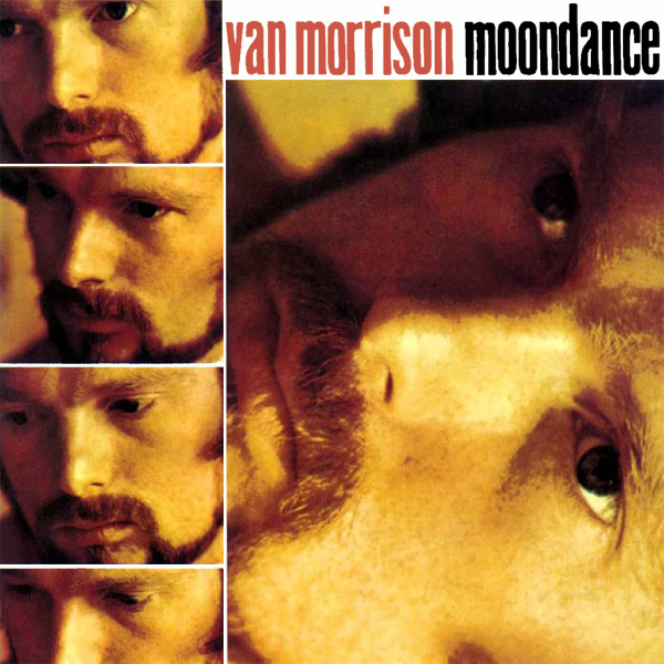 Original Cover Artwork of Van Morrison Moondance