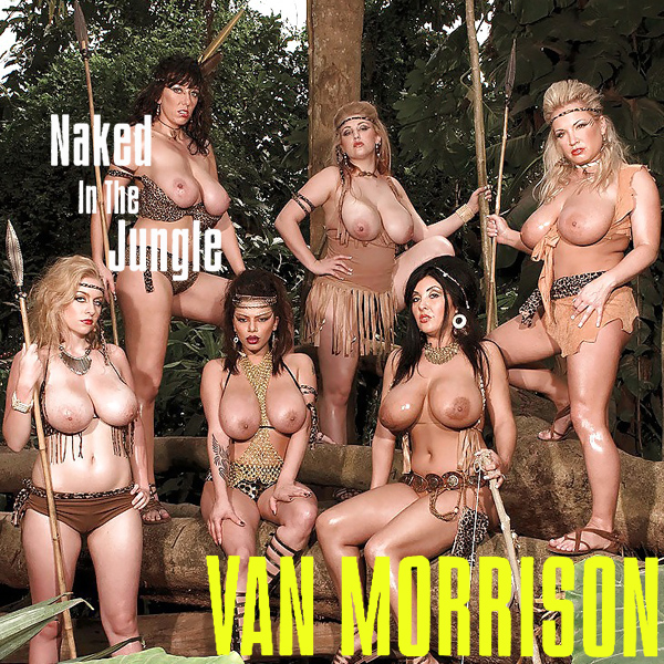 Cover Artwork Remix of Van Morrison Naked In The Jungle