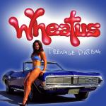 Original Cover Artwork of Wheatus Teenage Dirtbag Remix