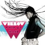 Original Cover Artwork of Willow Whip My Hair