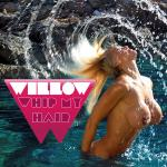 Cover Artwork Remix of Willow Whip My Hair